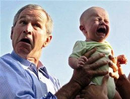 Bush with babies